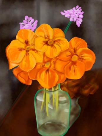 Orange nasturtium, digital